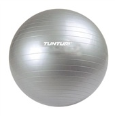 Tunturi Inflatable Gymball 65 cm with Pump Мяч для аэробики