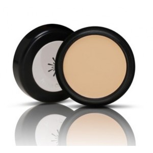 Missha The Style Perfect Concealer 3g #2